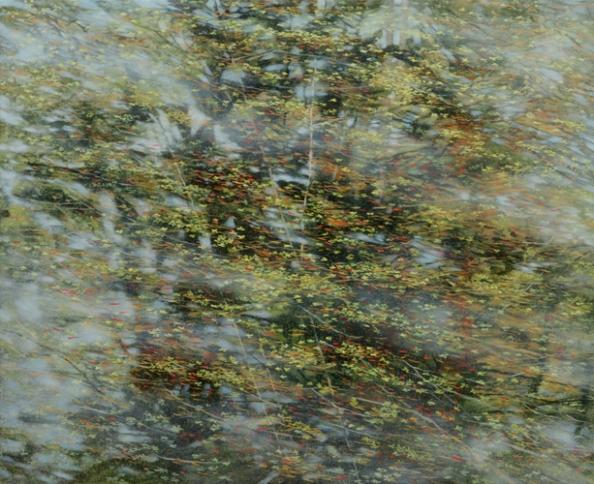 TM8527 Meditation #1 July 36x44 oil on panel