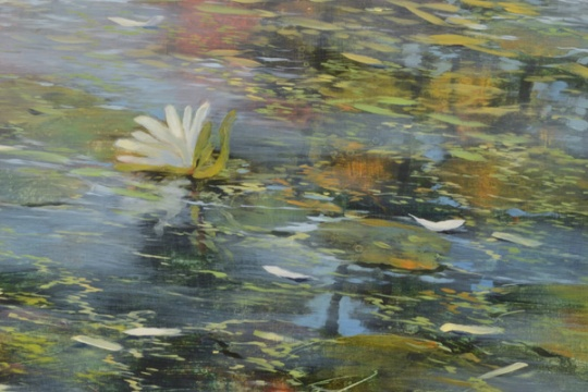 TM8397 The Day After (detail of lily, reflections, and floating petals)