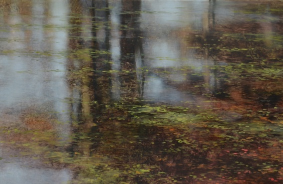 TM8399 Autumn Reverie (detail of reflections)