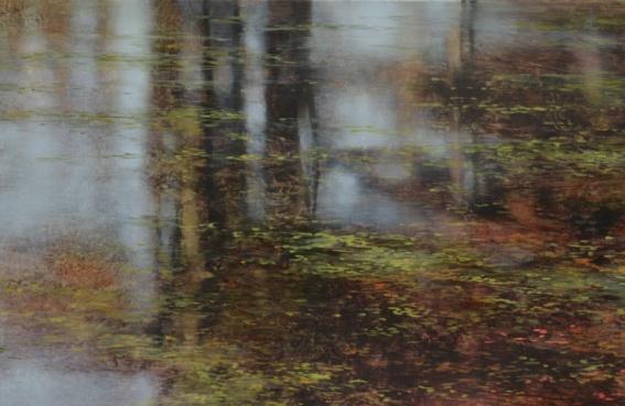TM8399 Autumn Reverie (detail of reflections)