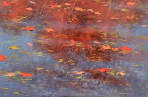 TM8437 Red Drift - detail from lower right showing water's surface with floating and sinking leaves, reflections, hints of underwater leaf mold