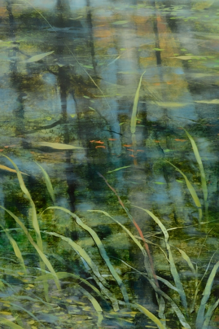 TM8439 Pond Edge - detail from lower left foreground, showing grasses in shallow water, reflected trees