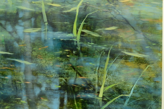 TM8439 Pond Edge - detail showing reflection of trees, floating leaves, grasses poking up through the water