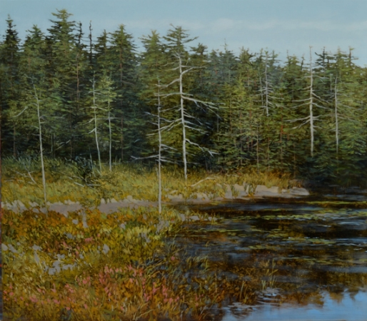 TM8442 Island Bog 28x32 oil on panel