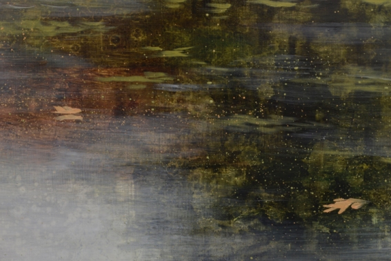 TM8448 In the Footsteps of Thoreau - detail from foreground water with floating leaves