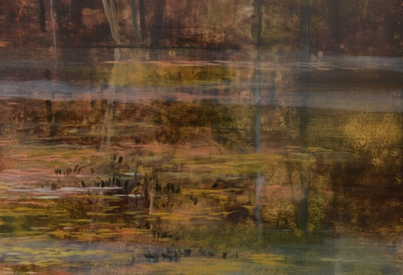 TM8448 In the Footsteps of Thoreau - detail from right side of far bank, water's surface with reflections,
