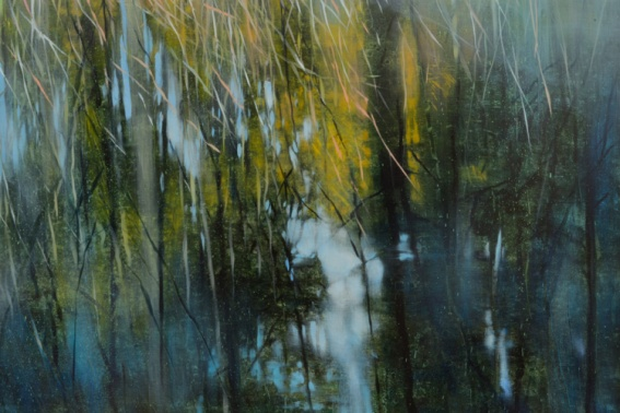 TM8455 Reflections #1 -detail showing reflections of trees and grasses in the water