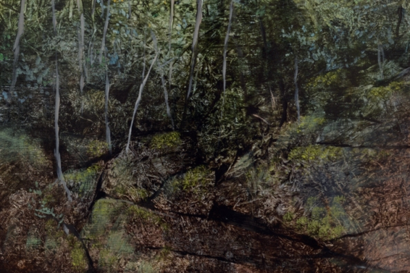 TM8456 Homage - detail from left side showing trees and ledge in shadow