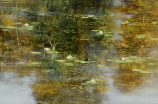 TM8453 Summer's Poem - detail of pond foreground