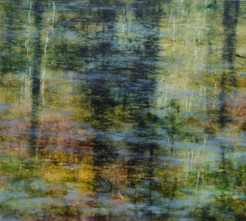 TM8461 Arboreal Reflections #2 36x40 oil on panel