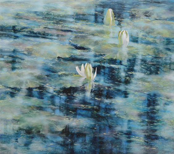 TM8474 When Lilies Open 36x40 oil on panel