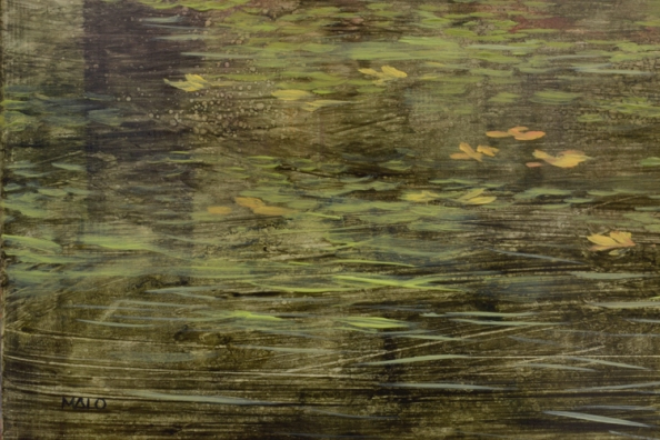TM8476 George Is Back! - detail from left foreground with floating leaves and emerging grasses, reflections