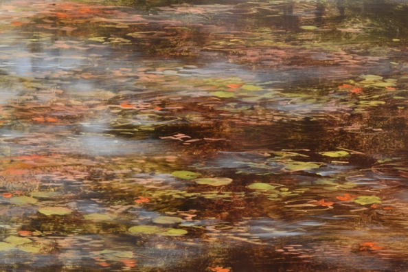 TM8478 Last Days of Summer - detail from foreground showing lily pads and reflections of sky, sunlight on surface of water