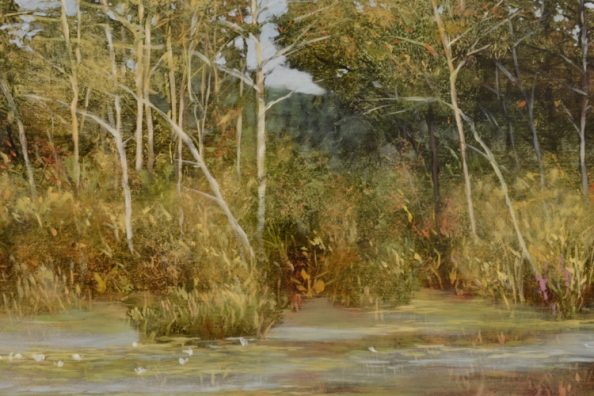 TM8478 Last Days of Summer - detail from left shore line showing lilies, woodland, far hill in distance