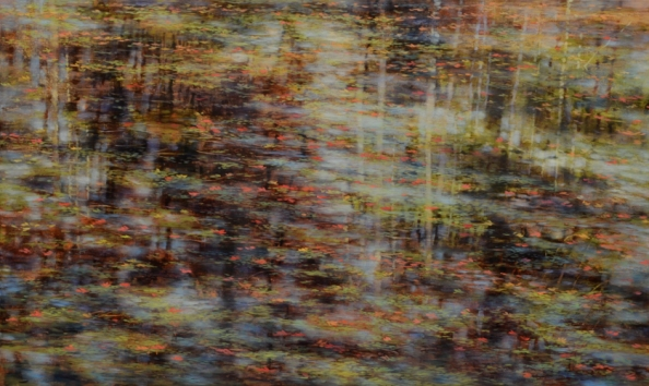 TM8480 Tapestry 30x50 oil on panel