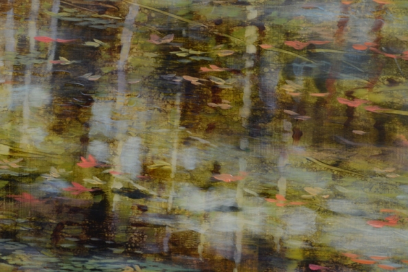 TM8480 Tapestry - detail showing sunlight reflected off cloud and onto water, along with reflected tree trunks and floating leaves