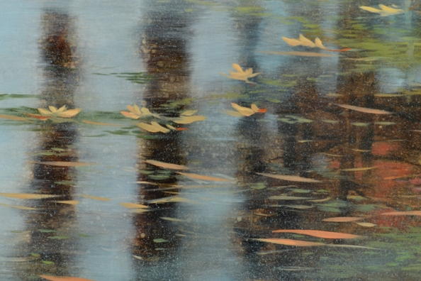 TM8481 The Moments Coalesce - detail from center with reflections of tree trunks, last year's leaves