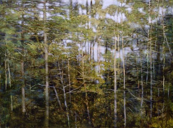 TM8507 Woodland Rain 30x40 oil on panel