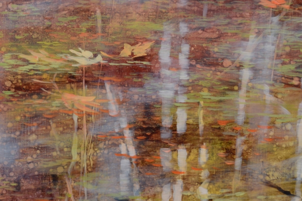 TM8462 Spring Redeems - detail of floating leaves and reflected birches
