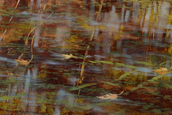 TM8520 Pausing Time - October - detail from bottom edge of painitng showing foreground with floating leaves and grasses, patterns of light and shade