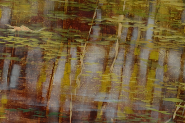 TM8520 Pausing Time - October - detail from right side of painting showing sunlit reflection, floating leaves and duckweed