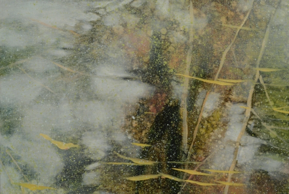 TM8524 From a Puddle in the Woods - detail from upper left corner