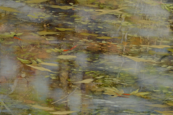TM8463 Let the Moments Last - detail from left side with reflected tree trunks, floating leaves