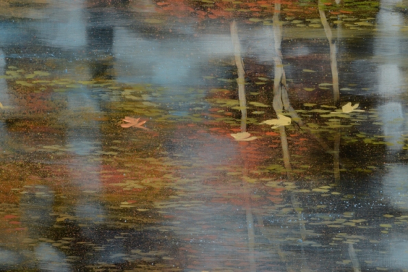 TM8532 First Signs - detail from middle left with floating leaves and reflections, effect of layered spattering alternating with glazes