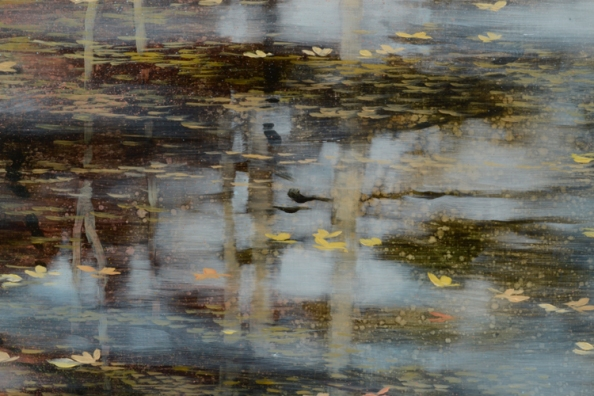 TM8532 First Signs - detail from upper right with reflected sky, sheen on water, floating vegetation
