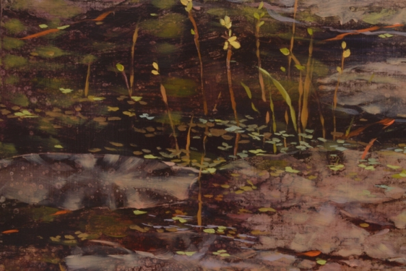 TM8435 Accompaniment - detail from left side with lily pads, bladderwort, duckweed