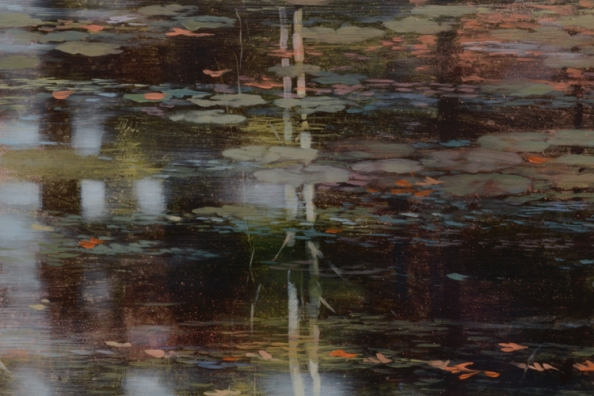 TM8535 Terra Rosa - close-up with reflections, lily pads