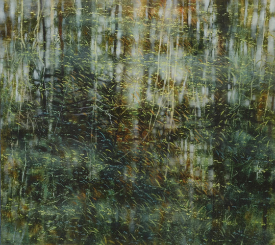 TM8543 Arboreal Reflections #4 36x40 oil on panel