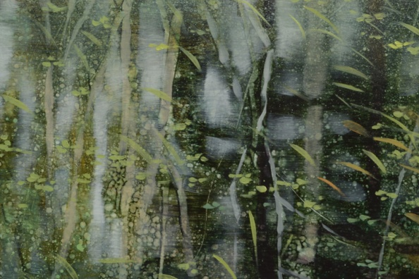 TM8543 Arboreal Reflections #4  detail fromleft of center with duckweed and grasses overlaying deeper tree reflections
