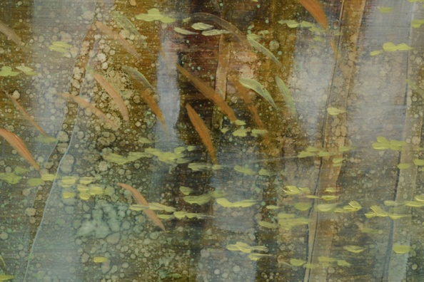 TM8543 Arboreal Reflections #4 - detail from top edge showing floating duckweed, flooded grasses, tree trunk reflections