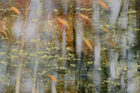 TM8543 Arboreal Reflections #4 - detail from top of painting showing layered paint application and light penetrating the forest