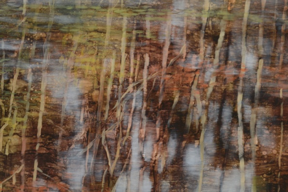 TM8544 Pond Logic - detail from center right showing reflections, contrast of hard and soft edges, interpenetration of reflected sky and trees