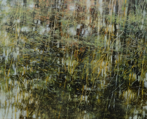 TM8562 Arboreal Reflections #5 36x44 oil on panel