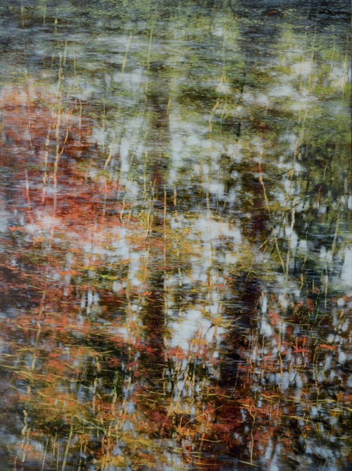 TM8579 Autumn Falls In 48x36 oil on panel