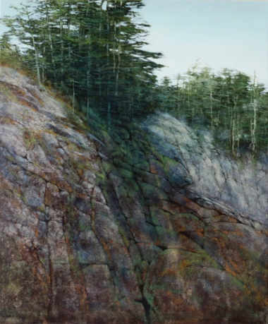 TM8584 Looking Up 36x30 oil on panel