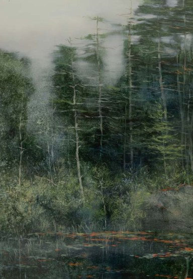 TM8586 Drizzly Day - detail showing pines and fog