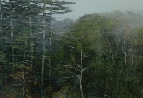 TM8590 Fogged In - detail of trees and distant woods