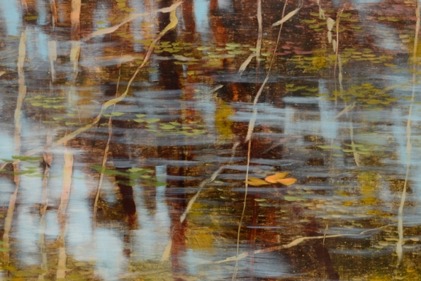 TM8689 Passing - detail from right of center with reflected branches, floating leaf, ripples on the water
