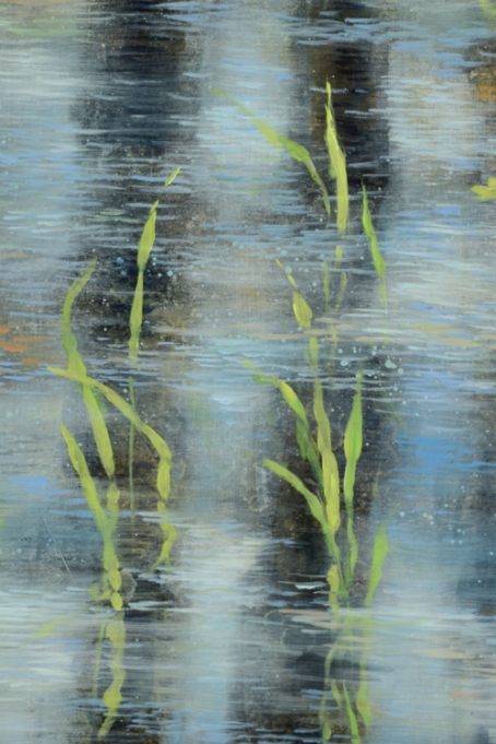 nc web TM8705 Poem from the Shallows - detail showing young grasses framed by tree trunk reflections