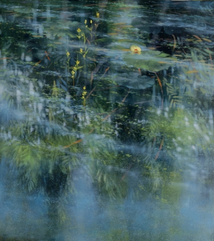 TM8706 Pond's Edge (with sleeping lily) 40x36 oil on panel