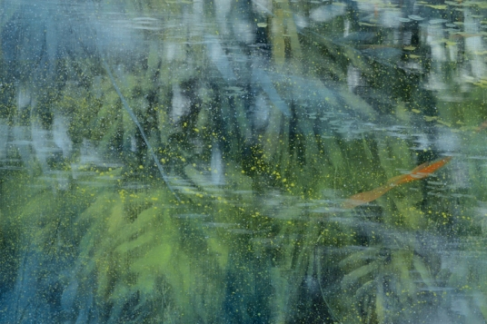 TM8706 Pond's Edge (with sleeping lily) - detail from left with fern reflections and floating pollen