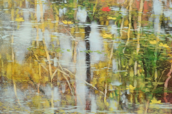 TM8740 Here Comes Autumn - detail from left of center
