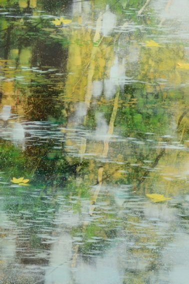 TM8740 Here Comes Autumn - detail from lower right with foliage reflections and floating leaves