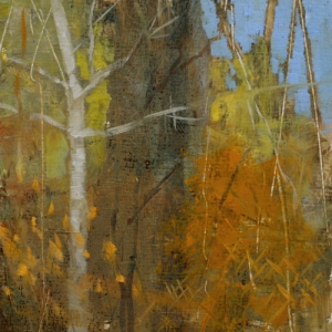 TM8745 Into the Woods #11 6x6 oil on paper