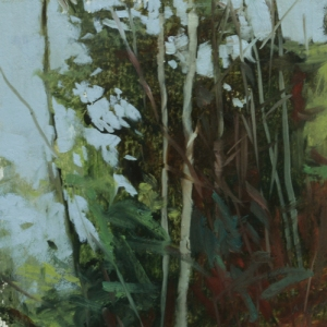 TM8753 Into the Woods #19 6x6 oil on paper