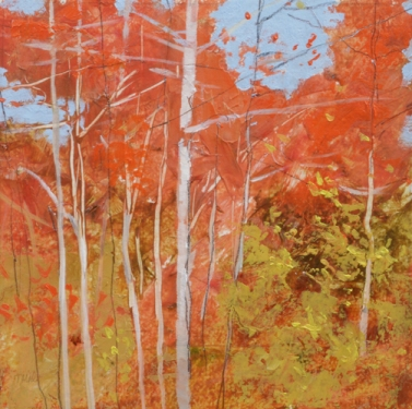 TM8799 Into the Woods #46 6x6 oil on paper